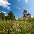 Summer landscape with deserted church in Novgorod region, Russia - Stockfoto