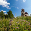 Summer landscape with deserted church in Novgorod region, Russia - Стоковая фотография