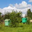 Summer landscape with honey bee hives — Stock Photo #9103171