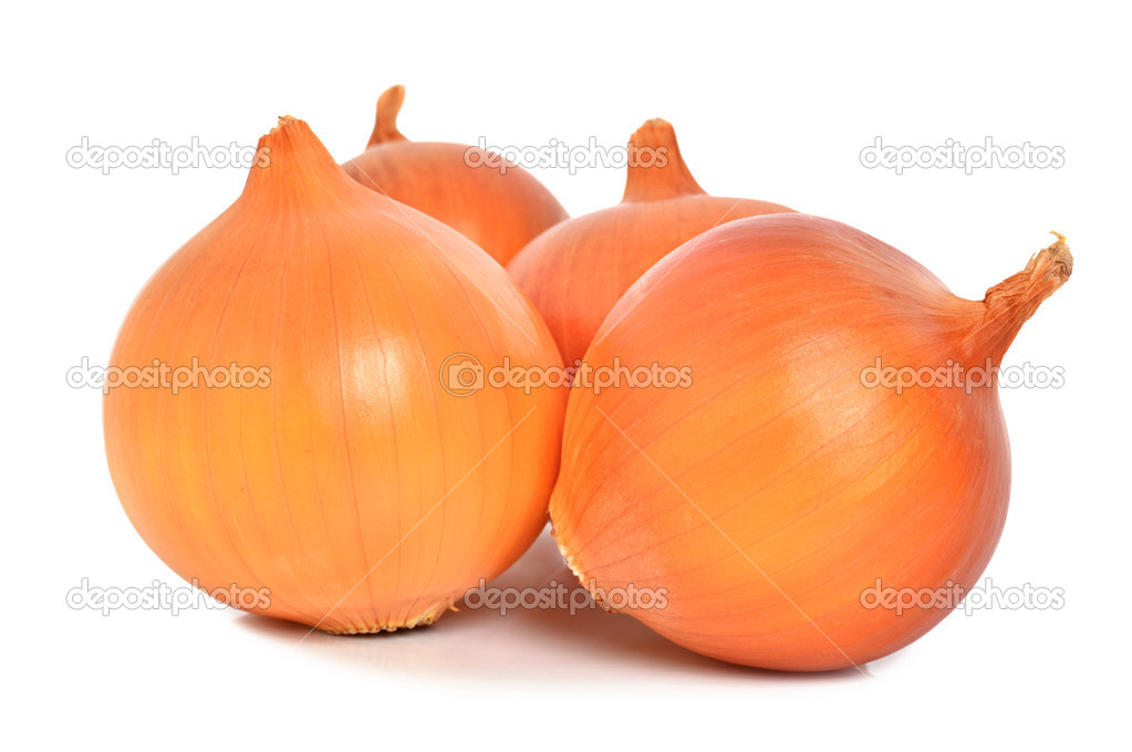 Onion isolated on a white background  Stock Photo #9058123