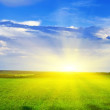 Panorama of a sunset over a green field — Stock Photo