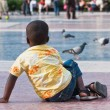 Dark-skinned boy and pigeons — Stock Photo