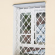 Old window with grille — Stock Photo #8265516