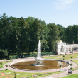 "Peterhof. Lower Park. Fountain ""Bowl"" parterre flower garden — Stock Photo #8903533"