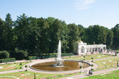 "Peterhof. Lower Park. Fountain ""Bowl"" parterre flower garden — Stock Photo"