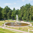"Peterhof. Lower Park. Fountain ""Bowl"" parterre flower garden — Stock Photo #9519044"