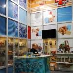 International exhibition TOY & GEME — Stock Photo