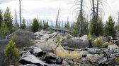 Paesaggio montano selvaggio — Foto Stock