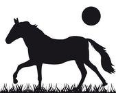 馬のベクトル シルエット — ストックベクタ