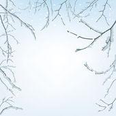 Die zweige des schnees — Stockvektor