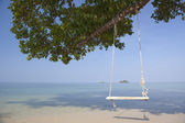 Swing on tropical beach. — Stock Photo