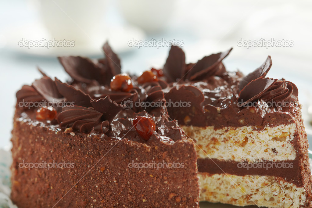 Chocolate and hazelnuts cake — Stock Photo #9107315