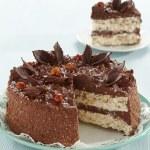 Chocolate and hazelnuts cake — Stock Photo