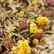 Dried wildflowers tea — Stock Photo
