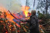 Big fire. Flame. — Stock Photo