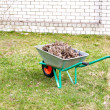 Hand cart filled with dry leaves in the spring — Stockfoto