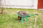 Hand cart filled with dry leaves in the spring — Stock Photo