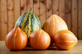 Vegetable marrow and pumpkins — Stock Photo