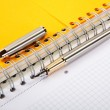 Fountain pen and writing-book on a spiral — Stock Photo