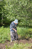 Old woman works in a garden — Stock Photo