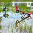 Stock Photo: Flooded playground