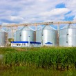 Agricultural elevator — Stock Photo #8805019