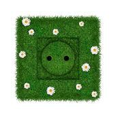 绿色插座 — 图库照片