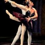 Swan Lake Ballet — Stock Photo #10571604