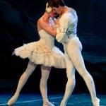 Swan Lake Ballet — Stock Photo #10571629