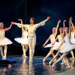 SwLake Ballet — Stock Photo #10571642
