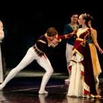 Swan Lake Ballet — Stock Photo #10572699