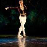 Swan Lake Ballet — Stock Photo #10572711