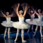 Swan Lake Ballet — Stock Photo #10572722