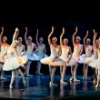 SwLake Ballet — Stock Photo #10572728