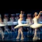 Swan Lake Ballet — Stock Photo #10572732