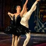 Swan Lake Ballet — Stock Photo #10572785