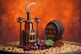 Federhalter und winemake — Stockfoto