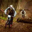Постер, плакат: Rider on a mountain bike
