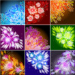 Set of floral backgrounds — Stock Vector #10050101
