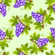 Grape seamless pattern — Stock Vector