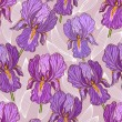 Purple Iris — Stockvectorbeeld
