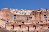 Colosseum — Stockfoto