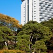 Foto Stock: Japanese autumn park and skyscraper