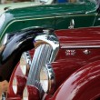 Stock Photo: CHENNAI - INDI- JULY 24: Car grill of Riley (retro vintage car
