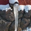 Icicle — Stock Photo
