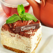 Chocolate tiramisu cake — Stock Photo #9794257