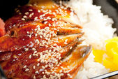 Broiled eel on rice. unagi — Stock Photo