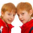Two twin boys — Foto Stock