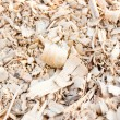 Tree sawdust — Stock Photo #10123900