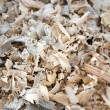 Tree sawdust — Stock Photo #10123925